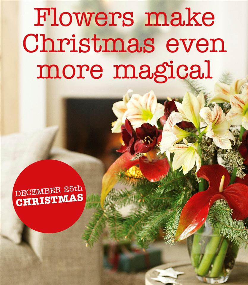 this the season to be jolly and christmas is almost upon us once again now is the time to start ticking off all those last remaining items still to do on - How Much Longer Till Christmas